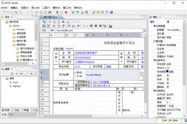 皕杰报表产品白皮书(v5.2)